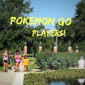 Pokemon Go Players